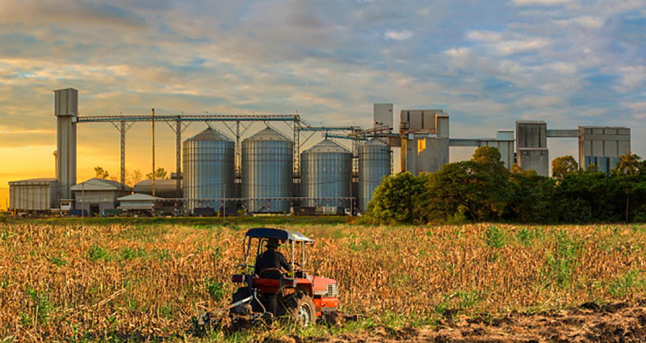 El necesario salto del sector primario hacia la industria agro-productiva